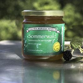 Honig - Sommertracht mit Honigtau