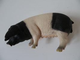 Schleich Schwäbisch-Hallisches Schwein, 2005