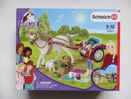 Schleich Kutsche für Pferdeshow, 2020