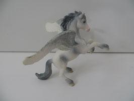 Bayala Pegasus steigend, 2004