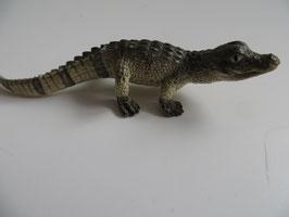 Schleich Alligator Junges, 2014