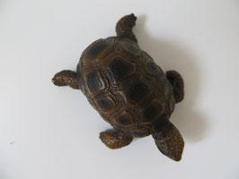 Schleich Landschildkröte 2002