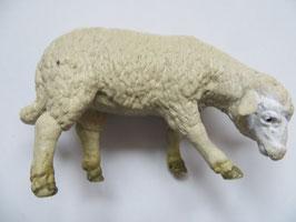 Schleich Schaf fressend, 1994