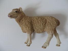 Schleich Schaf, 2013