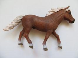 Schleich Island Pony aus Agility Set, 2018
