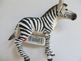 Schleich Zebra Junges, 2017