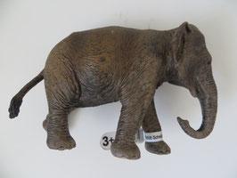 Schleich Asiatische Elefantenkuh, 2015