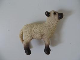 Schleich Shropshire Lamm, 2011