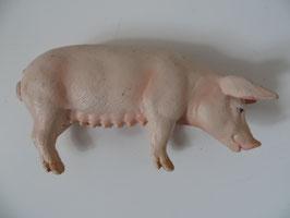 Schleich Schwein, 2003