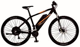 """PROPHETE GRAVELER 20.EMM.20 Mountain E-Bike 29"""" AEG EasyDrive +"""