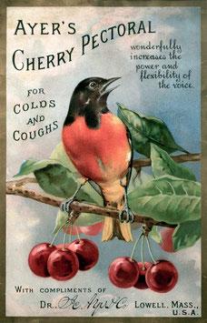 Cherry Pectoral