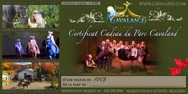 Certificat-cadeau Cavaland d'une valeur de 100$