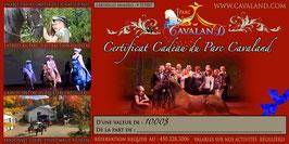 Certificat-cadeau Cavaland d'une valeur de 1000$ (cours, pensions, spectacles, rando...)