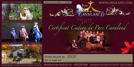 Certificat-cadeau Cavaland d'une valeur de 500$ (cours, pensions, spectacles, rando...)