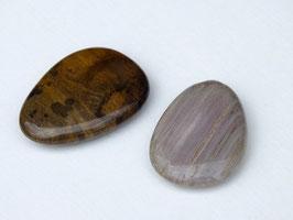 Bois fossilisé en palets roulés