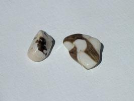 Bois fossilisé cacahuète en pierres roulées