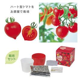 【最安値】ハートマト プチ栽培セット@328円  ×72個【送料無料】