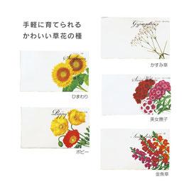 【最安値】花の種子@22円×1,000個【送料無料】