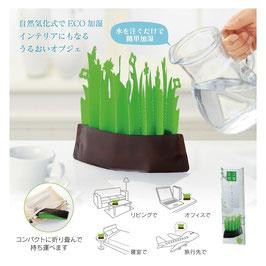 エコ加湿ガーデン