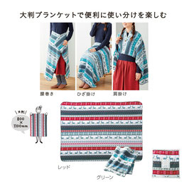 【最安値】ノルディック 3WAY大判ブランケット 298円