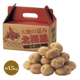 【最安値】大地の恵み 北海道男爵いも 1.5kg 368円×16箱【送料無料】