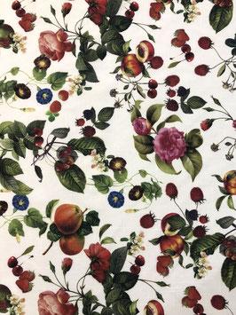 Visillo frutas