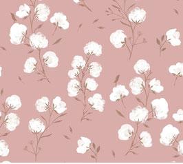 Shoftshell flores rosas