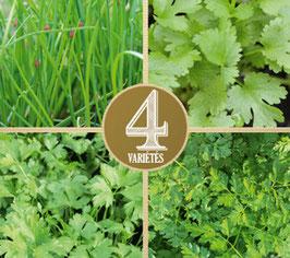 4 Gartenkräuter