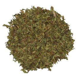 Stevia Süsskraut