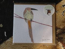 "Growing Paper Grußkarte ""Bird 1"" Gemma Orkin"