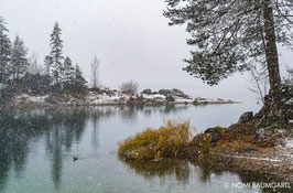 First Snow IV, Eibsee, German Alps 2016