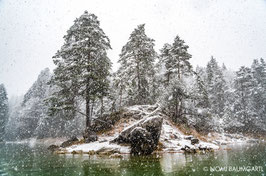 First Snow III, Eibsee, German Alps 2016