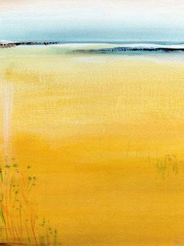 Canary shore