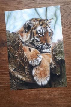 "FINE ART PRINT ""Tiger Cube"" 20 x 30 cm"