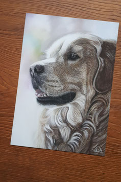 """FINE ART PRINT """"Goldie"""", 20 x 30 cm"""