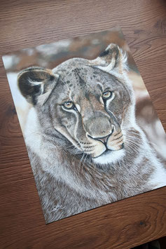 "FINE ART PRINT ""Lion Queen"" 30 x 40 cm"