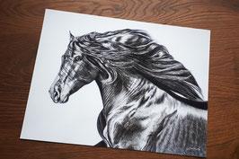 """FINE ART PRINT """"HISPANO"""" 30 x 40 cm"""