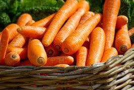 胡蘿蔔浸泡油 Organic Carrot Infusion Oil