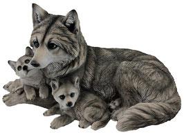 Wolf mit zwei Welpen grau