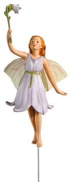 Flower Fairy - Glockenblume