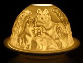 Porzellan - Windlicht Hunde