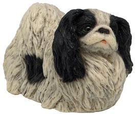 Hund - Pekinese stehend