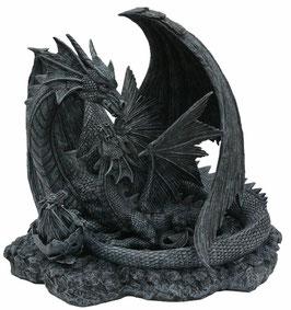 Drachen schwarz