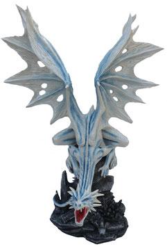 Drachen weiss-blau