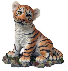 Tiger-Junge sitzend