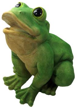 Frosch XXL sitzend