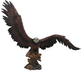 Adler XXL