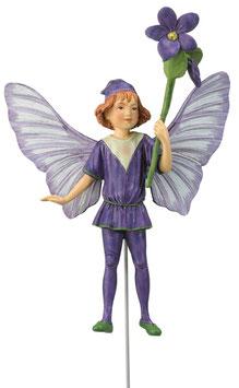 Flower Fairy - Veilchen
