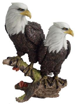 Zwei Adler auf Ast
