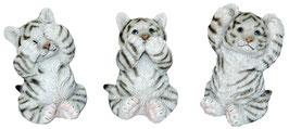 Tiger weiss die drei Weisheiten